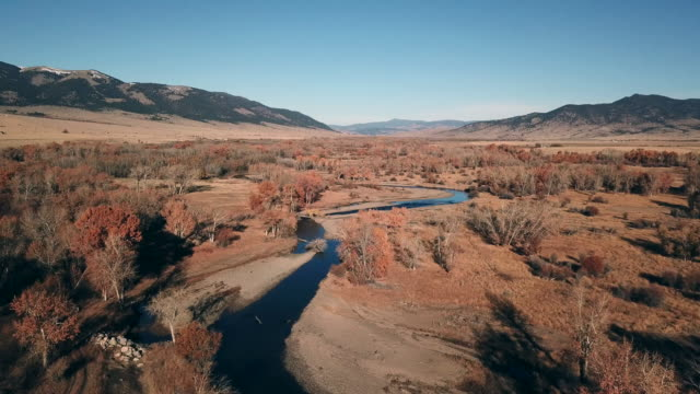 drone shot of river bottom land on cattle ranch with autumn colored trees and golden grass in fields with stack of hay bails and cattle eating in pastures. - hay stack stock videos & royalty-free footage