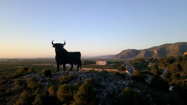 drone shot of silhouette of a bull in spain - bullfighter stock videos & royalty-free footage