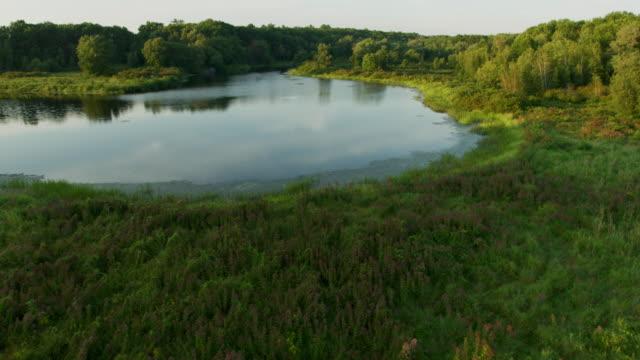 vídeos y material grabado en eventos de stock de drone shot of the charles river at the cutler park reservation - marisma