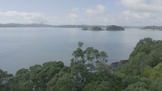 drone shot of the te ti bay from the waitangi treaty grounds - bay of islands new zealand stock videos & royalty-free footage