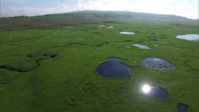 drone shot of the uryu-numa wetlands - zona erbosa video stock e b–roll