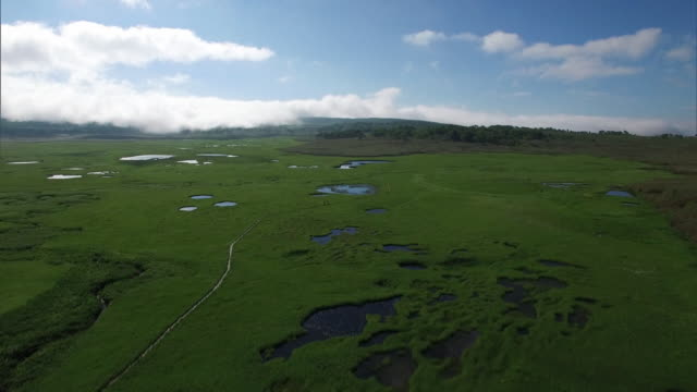 drone shot of the uryu-numa wetlands - ワスレナグサ点の映像素材/bロール