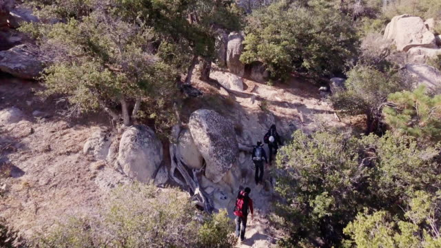 drone shot of two men and a woman hiking through forest - angeles national forest stock videos and b-roll footage