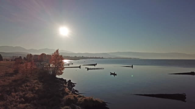 drone shot of woman at sunrise in red jacket paddling cedar strip canoe in calm lake along estuary shoreline in autumn. - flathead lake stock videos and b-roll footage