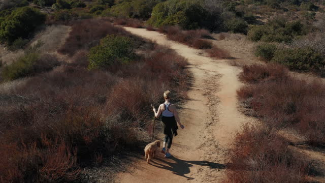 drone shot of woman walking her dog on the trails of la canada - 50 54 years stock videos & royalty-free footage