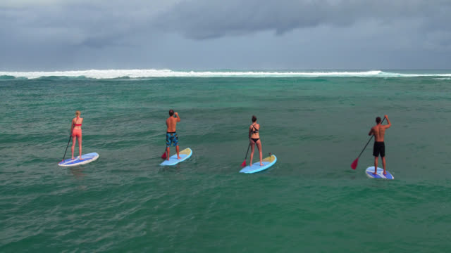 drone shot over four stand up paddle boarders - turtle bay hawaii stock videos and b-roll footage