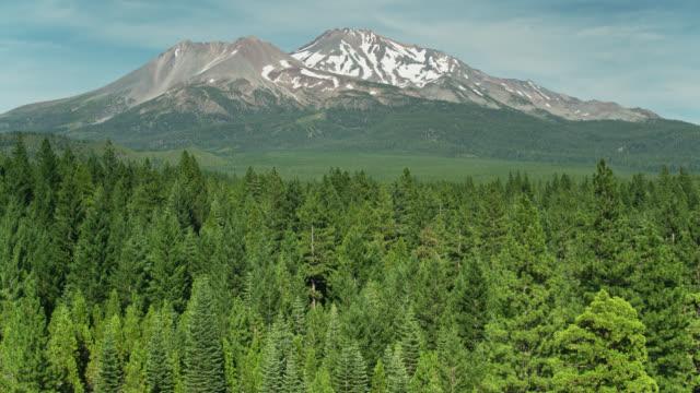 drone shot over treetops towards mount shasta, california - cascade range stock videos & royalty-free footage