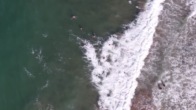 a drone shot showing a group of women swimmers enjoying the sea. - swimming stock videos & royalty-free footage