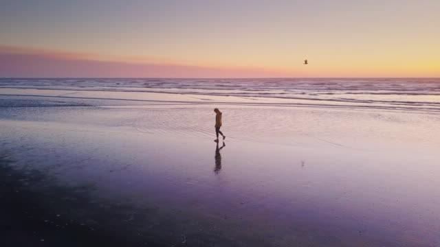 drone shot - solitary woman walking on beach at sunset - esplorazione video stock e b–roll