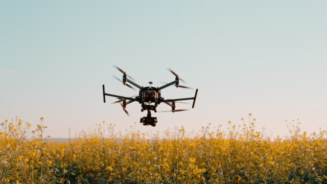 super slo mo drone take off on a field of canola - high up stock videos & royalty-free footage