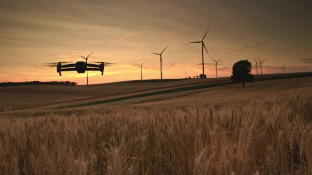 vidéos et rushes de ws drone prenant une photo d'un champ de blé et d'éoliennes - faire fonctionner