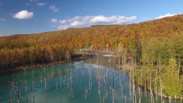 drone: the shirogane blue pond at biei - biei town stock videos & royalty-free footage