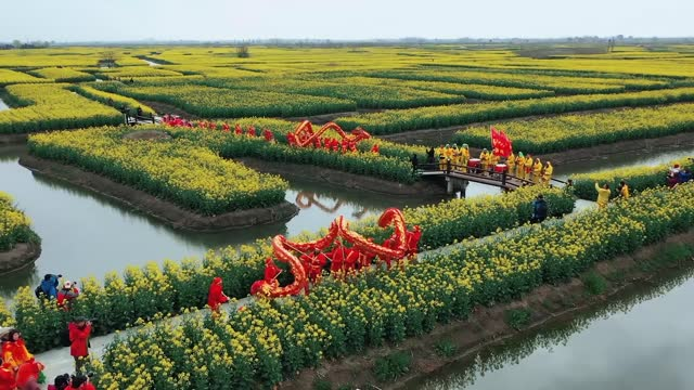 drone video of tourists touring around the wetlands enjoying the scenery around rapeseed flowers by electric boat at xinghua qianduo scenic area in... - china east asia stock videos & royalty-free footage
