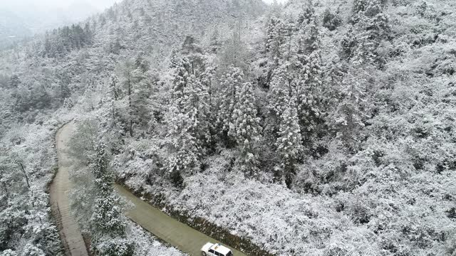 drone video shows villages above 1,000 meters above sea level begin to see snow as temperatures drop in xiangxi tujia and miao autonomous county in... - pine stock videos & royalty-free footage