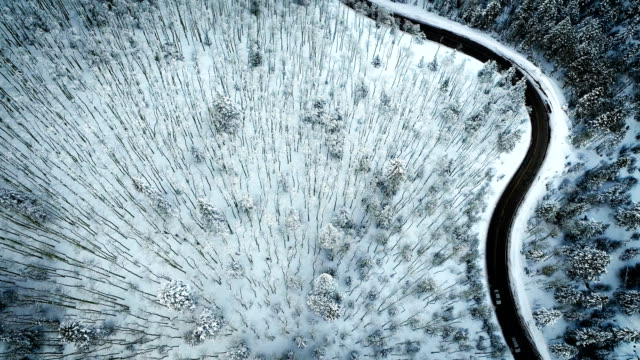 drone view above snow covered forest and curved highway - santa fe new mexico stock videos & royalty-free footage