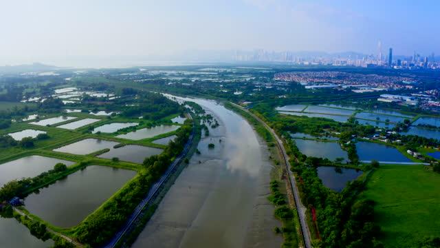 drone view fiskdammar i yuen long, hong kong - akvatisk organism bildbanksvideor och videomaterial från bakom kulisserna