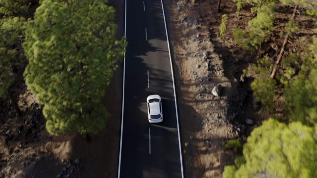 drone view of a cars driving at high speed through pine forest in teide national park, tenerife, canary islands, spain, atlantic, europe - pinaceae stock videos & royalty-free footage