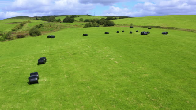 drone view of bales of silage or hay wrapped in black plastic in a field in rural dumfries and galloway, south west scotland - johnfscott stock videos & royalty-free footage