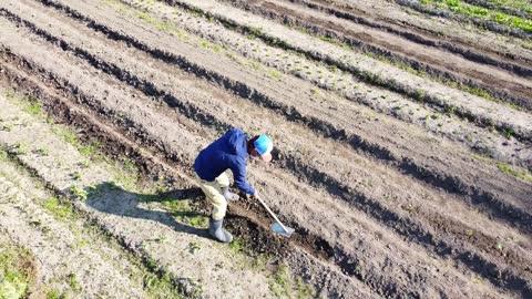vídeos y material grabado en eventos de stock de vista de drones del granjero que trabaja en su campo de cultivo con una azada - arar