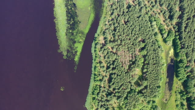 stockvideo's en b-roll-footage met a drone view of the chernobyl's disaster area and the chernobyl nuclear power site from the bridge over pripyat in pripyat on june 17 2019 the... - kernramp van tsjernobyl
