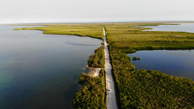 drone view of the florida keys highway between the mangroves trees in infinite landscape. - エバーグレーズ国立公園点の映像素材/bロール