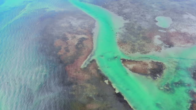 drone view of the shallow waters in the florida keys with turquoise color. - reef stock videos & royalty-free footage