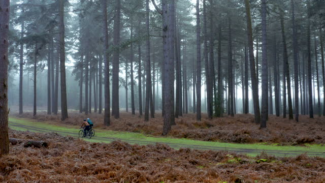 drone view of two cyclists on forest track - sports helmet stock videos & royalty-free footage