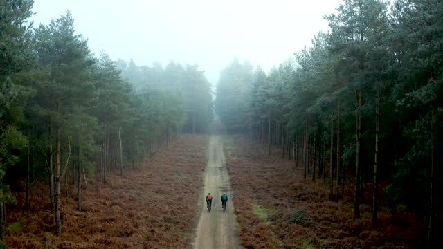 vidéos et rushes de drone view of two cyclists on forest track - route de campagne