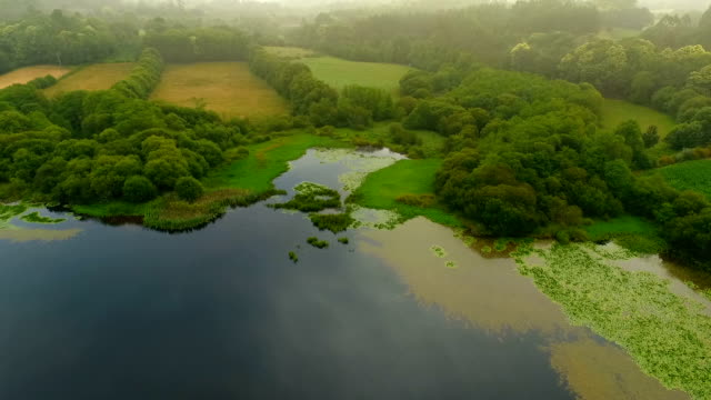 drone view over a lake in spain - galicia stock videos & royalty-free footage