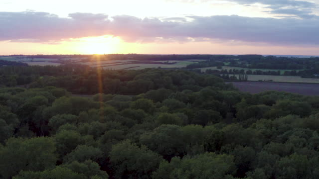 drone view over woodland and countryside at sunset - non urban scene stock videos & royalty-free footage