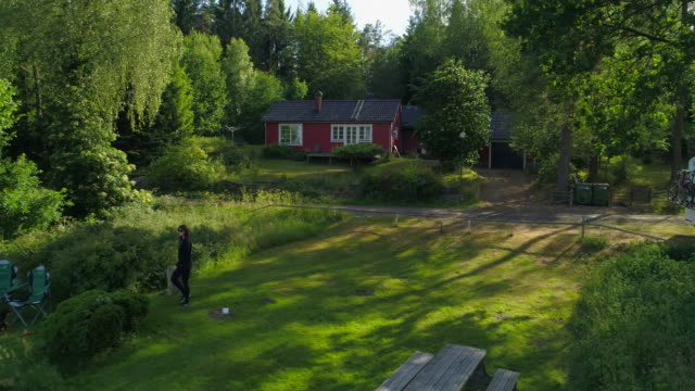 drone : woman walking on field by lake - smaland, sweden - pet bed stock videos and b-roll footage