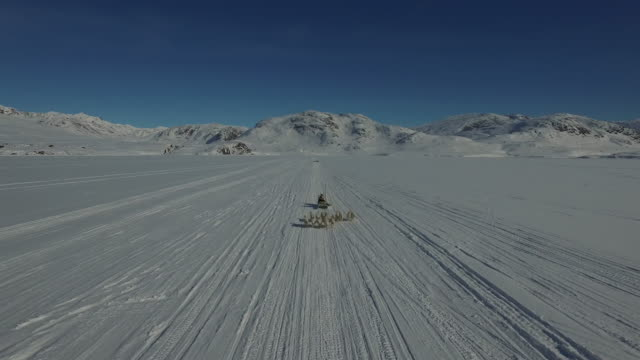 Dronefootage of dogsledge approaching drone