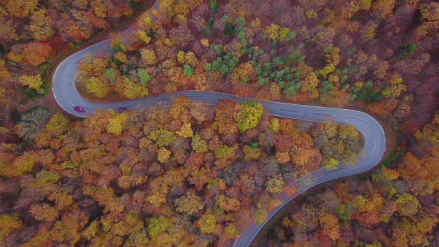 Drones: an aerial road trip - 4k aerial view travelling by car on country road