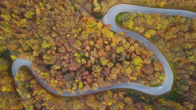 Drones: An Aerial Road Trip - 4k aerial view winding road in autumn forest
