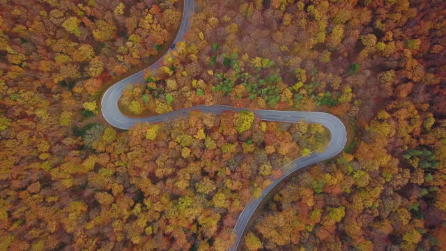 Drones: an aerial road trip - colorful autumn 4k aerial shot with road