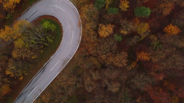 Drones: an aerial road trip - flying along curvy road in autumn forest 4k