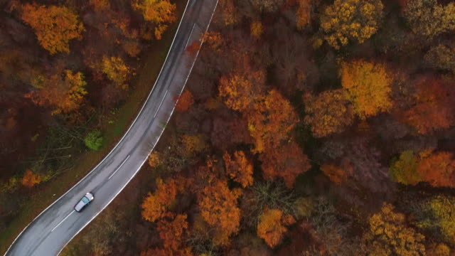 Drones: an aerial road trip - flying over colorful trees and country road 4K