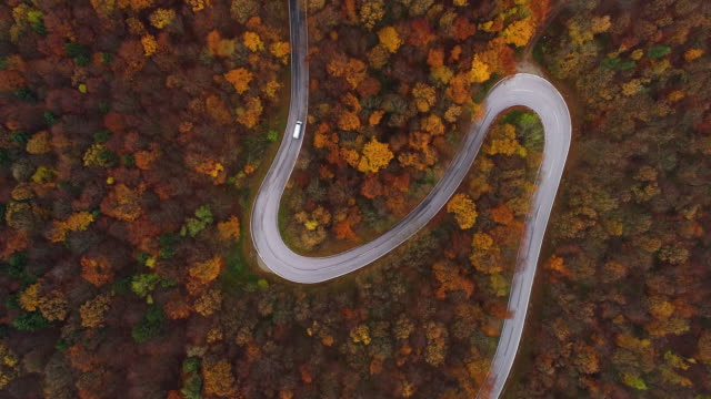 drones: an aerial road trip - flying over country road in late autumn 4k - halbnahe einstellung stock-videos und b-roll-filmmaterial