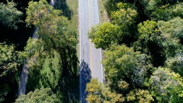 drones: an aerial road trip - tree canopy stock videos and b-roll footage