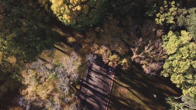 drones: an aerial road trip - central park manhattan stock videos & royalty-free footage