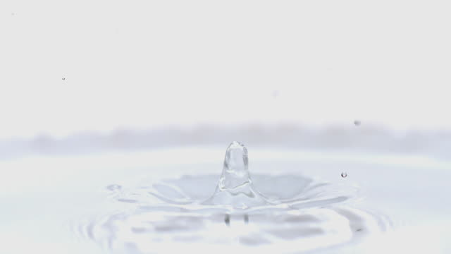 MS SLO MO Droplet falling into Water against White Background / vieux pont en auge, Normandy, France