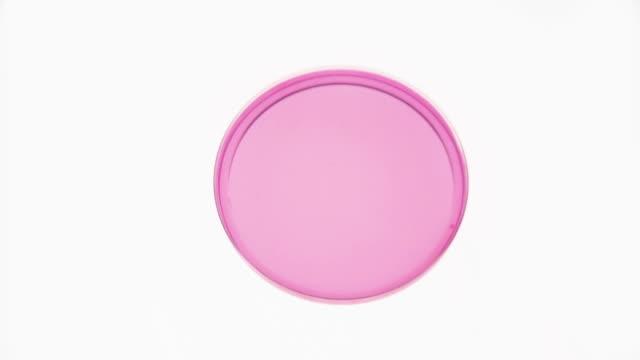 vídeos y material grabado en eventos de stock de cu dropper taking fluid sample from petri dish with pink fluid / berlin, germany - petri dish
