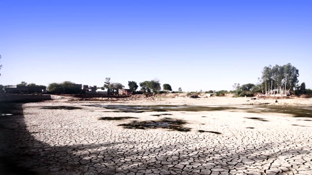 drought land - drought stock videos and b-roll footage