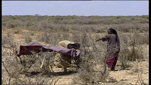 Drought threat warning SOMALIA Wajid Woman sits on ground in feeding station with young child wrapped in her shawl Long shot of people walking across...
