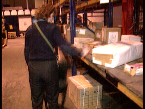 drugs smuggling c4n heathrow airport cms two customs officials going thru packaging bv customs handler with sniffer dog going thru cargo shelves... - 密輸点の映像素材/bロール