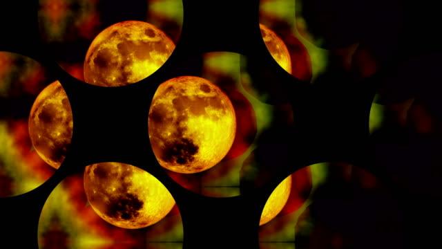 Druid Moons
