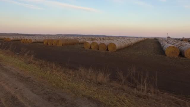 vídeos y material grabado en eventos de stock de drving past a landscape full of haystacks - trigo