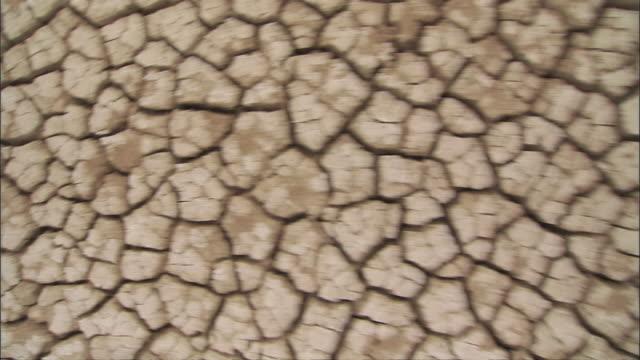 cu zo dry crack mud / republic of djibouti - trockenlandschaft stock-videos und b-roll-filmmaterial