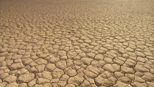 dry cracked earth during a drought. available in hd - cracked stock videos & royalty-free footage