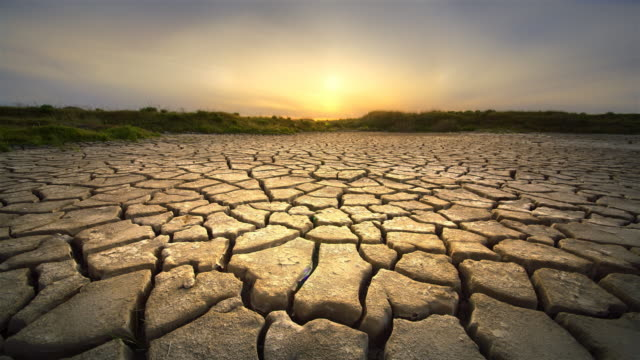 Dry, cracked earth during summer drought at dawn, California
